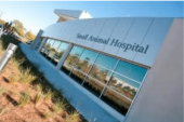 UF Small Animal Hospital gains Accreditation from AAHA