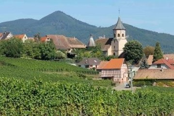 A guide to summer sipping on the wines from Alsace