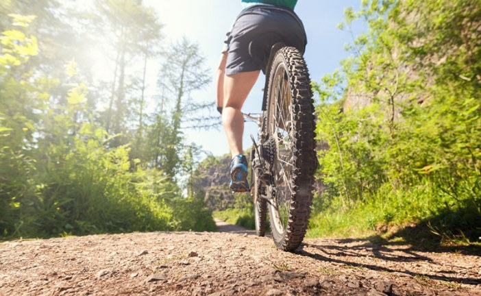Alachua County treasures: bikes, trails, and parks