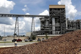 Biomass Buyout and Electricity Choice: a Consumer Review
