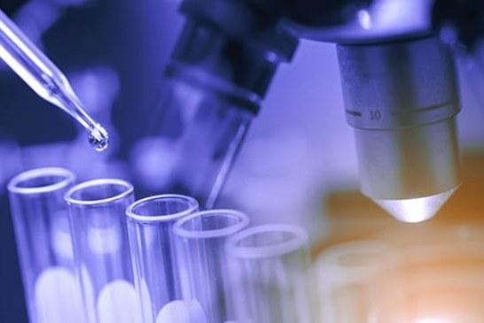 Brammer Bio Announces Progress on $200 Million Program to Advance Gene Therapies