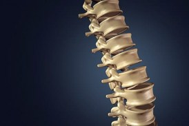 RTI Surgical® to Acquire Paradigm Spine