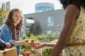 Food Check-Out Week Events Celebrate Food and Farms