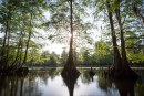 Alachua Conservation Trust earns one of nine national grant awards