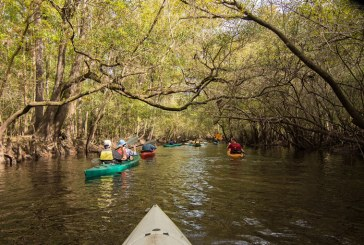 $35,000 Awarded to Alachua Conservation Trust to Protect Land in the Santa Fe River Basin