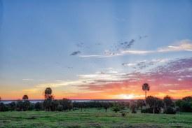 Alachua Conservation Trust Purchases Orange Lake Overlook