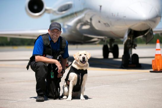 Gainesville Regional Airport K9 Team Participate in National Calendar to Help Protect Law Enforcement Dogs