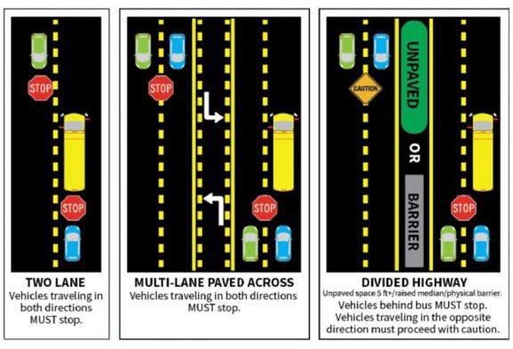 Motorist Safety Near Stopped School Busses